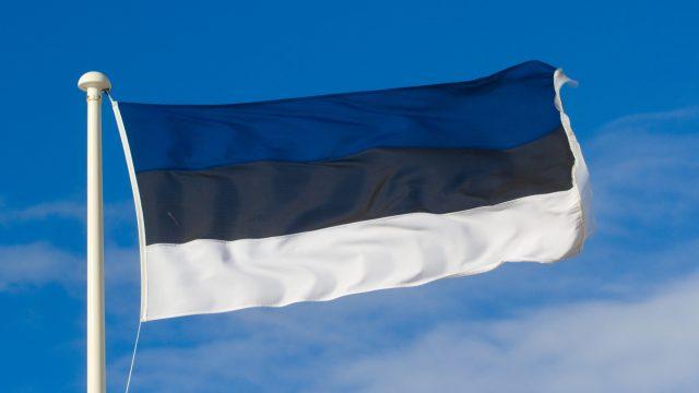 Естонія запровадила локдаун через поширення британського штаму коронавірусу