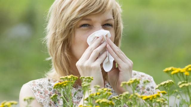 Алергія влітку: на що найчастіше виникає хвороблива реакція організму