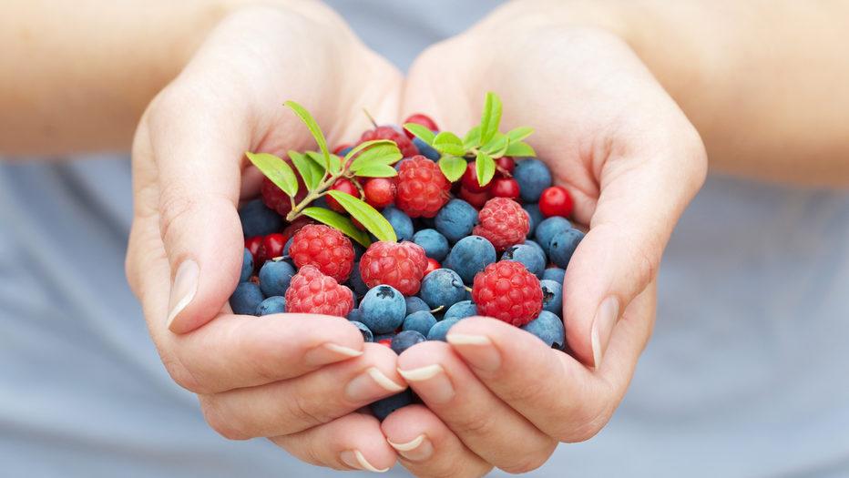 Мають бути на столі: які ягоди варто вживати влітку та чим вони корисні